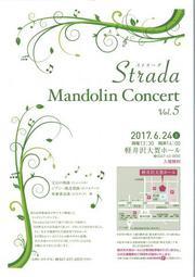 Strada Mandolin Concert Vol.5