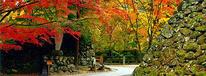 小諸城址懐古園 紅葉まつり