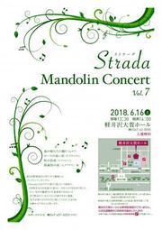 Strada Mandolin Concert Vol.7