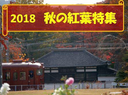 2018 秋の紅葉特集